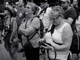 'People with Cameras', Hyde Park, Sydney, February 27, 2016