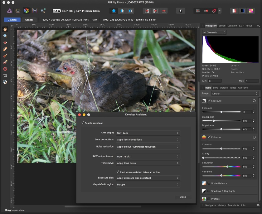Affinity Photo raw developing with lens corrections applied.