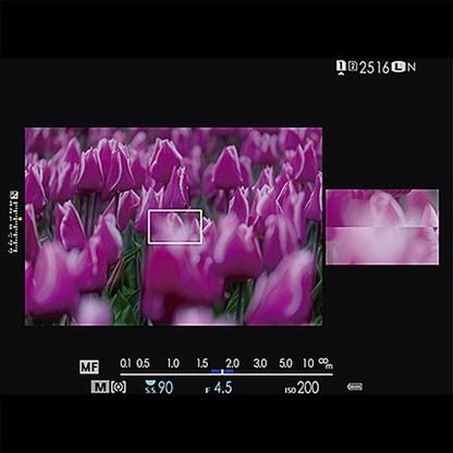 fujifilm_x-t2_pinpoint_focusing_01_1024_80pc